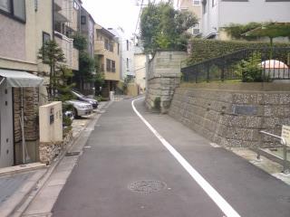 指ヶ谷リベンジ(2) 最上流・西原_d0247424_10575836.jpg