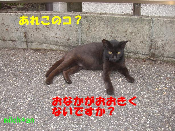 b0115642_20211268.jpg