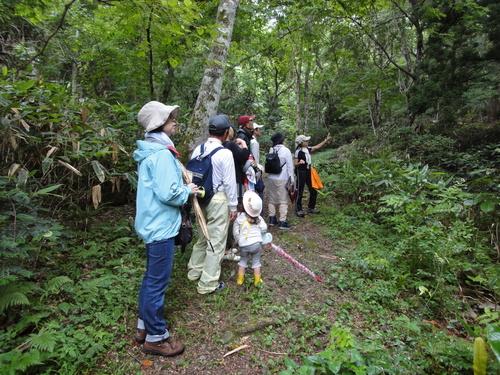 森林セラピーに行ってきました!_b0211845_19372074.jpg