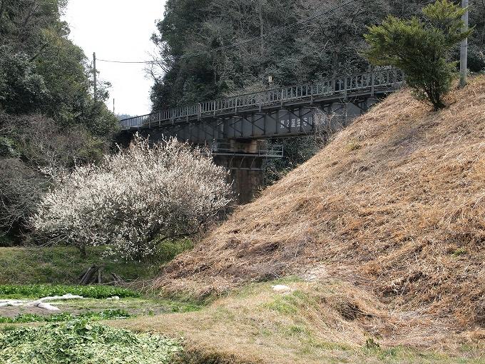 津山線の橋梁その1_f0116479_22542457.jpg