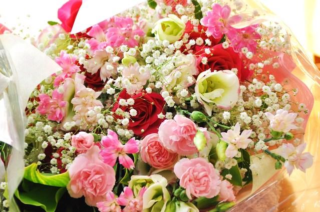 幸せかぼ父さん_a0126590_2345991.jpg