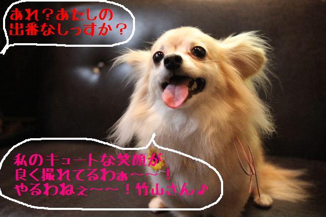 b0130018_18132238.jpg