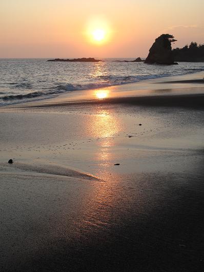 秋谷海岸 散歩(4)_d0150720_64838100.jpg