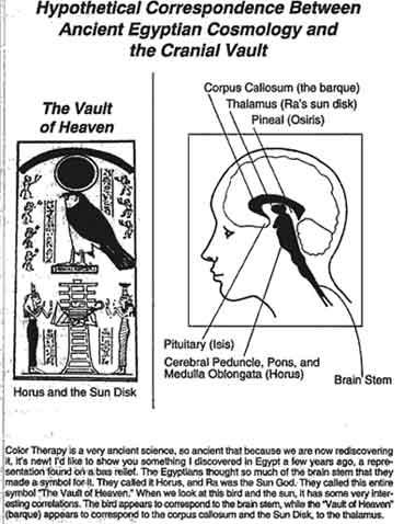 ヒエログリフの意味する物は・・・ / 脳染・脳幹_b0003330_0102836.jpg