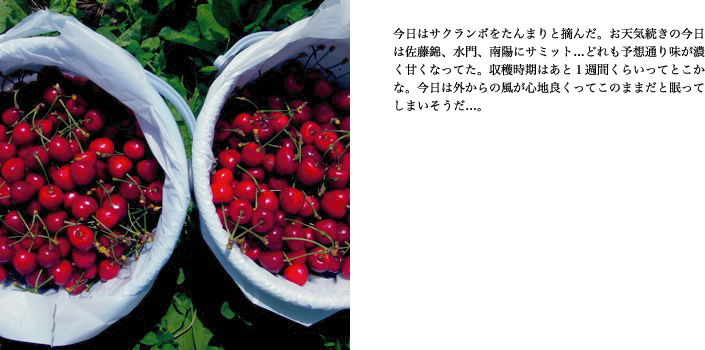 f0220343_34354.jpg