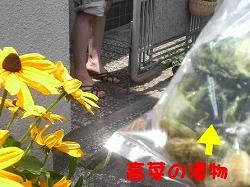 d0138650_201126100.jpg