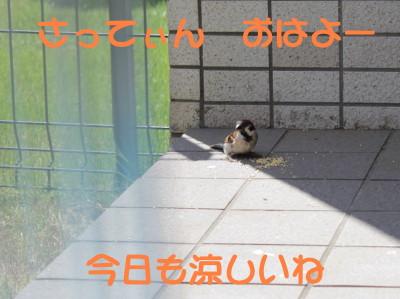 b0158061_2124082.jpg