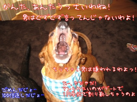 a0091865_20076.jpg