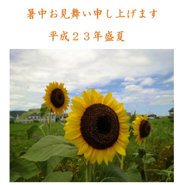 e0085772_9541639.jpg