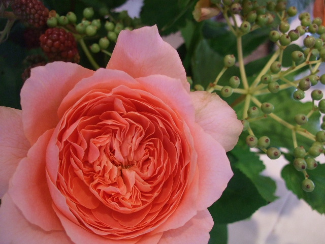 オークリーフ花の教室(岸川さん親子の作品)_f0049672_13184731.jpg