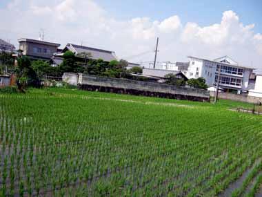 6/30大阪方面♪_d0136282_11575529.jpg