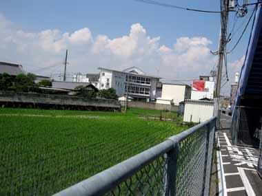 6/30大阪方面♪_d0136282_1158661.jpg