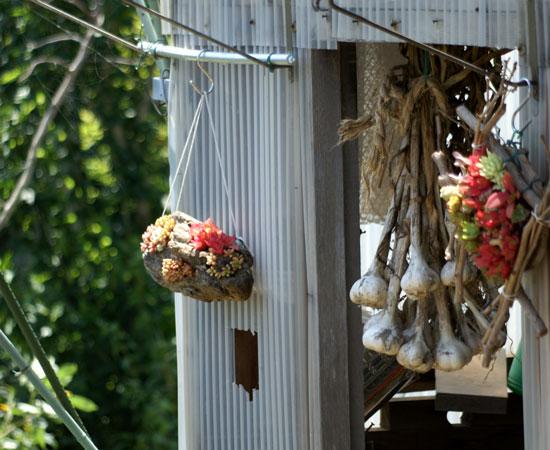 雀の餌台と覗き窓(^^)v_a0136293_17121226.jpg