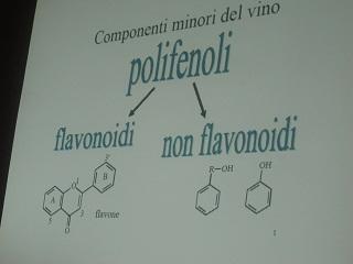 ワインについて  の授業_a0154793_123367.jpg