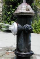 夏のニューヨーク名物、消火栓で水遊び_b0007805_22113538.jpg