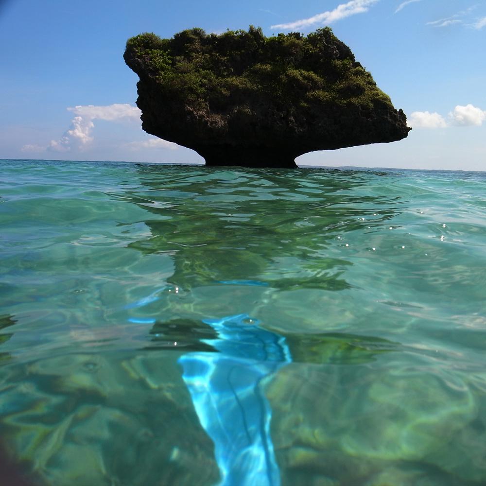 海中散歩_e0004009_0102426.jpg