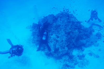 水納島のベストシーズン_b0158923_1742395.jpg
