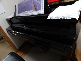 いくじなしのピアノ_d0165645_1675055.jpg