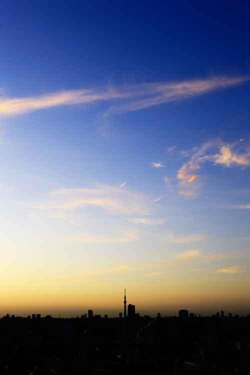 今日の朝焼けとスカイツリー_a0155464_6504376.jpg
