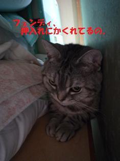 f0219773_17225519.jpg