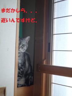f0219773_17231491.jpg