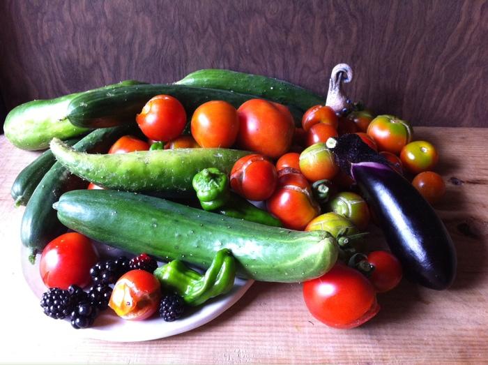 夏野菜は・・収穫して、お腹へ~!_b0087077_041122.jpg