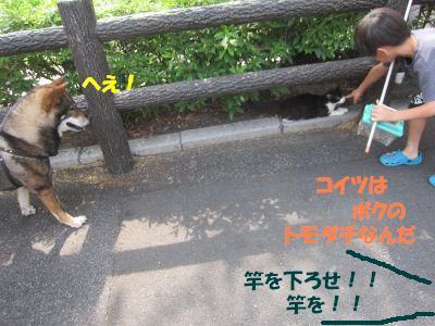 f0143123_20153685.jpg