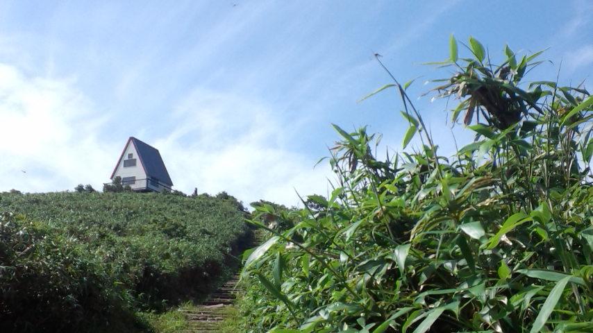 夏山シーズン到来!!_f0101226_2154824.jpg