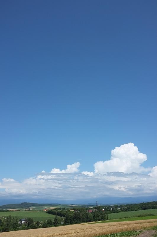 富良野撮影会終了_f0050534_7402337.jpg