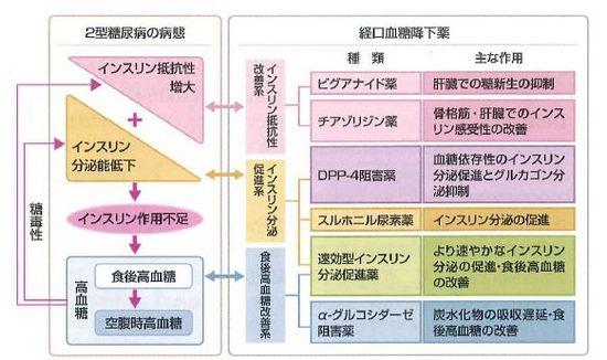 井蛙内科開業医/診療録(4)