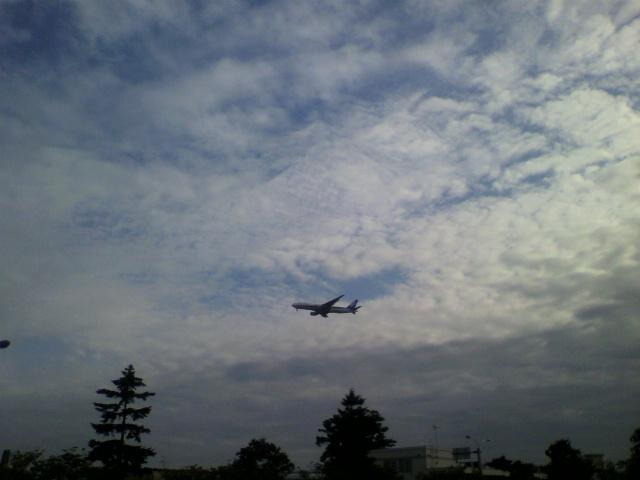 飛行機が_b0106766_22224689.jpg