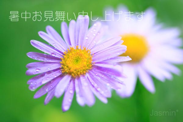 c0145780_10423356.jpg