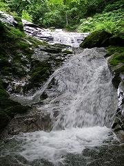 高原川支流、ウジガ谷~コゴミ谷_e0064783_22454828.jpg