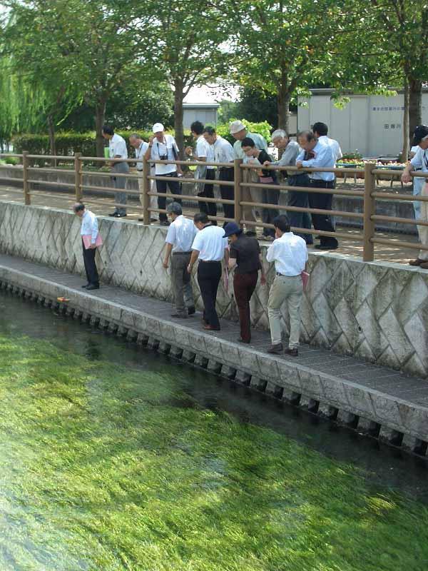 いろいろなことがわかった「田宿川をもっと学ぼう!」講演会_f0141310_712597.jpg