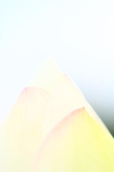 f0181018_239441.jpg