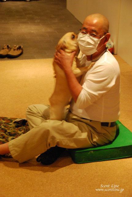 愛犬の為の整体教室キャンセルが出ました (受付終了しました)_c0099133_22421291.jpg