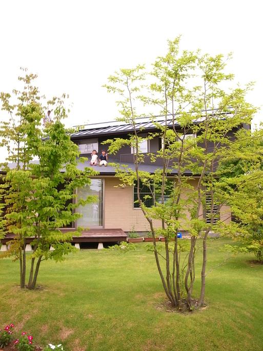 Hさんの家(2009) OM2年点検 2011/7/23_a0039934_17293320.jpg