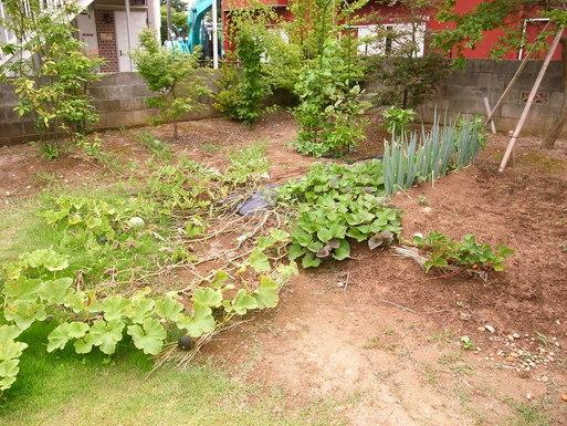 Hさんの家(2009) OM2年点検 2011/7/23_a0039934_1745119.jpg