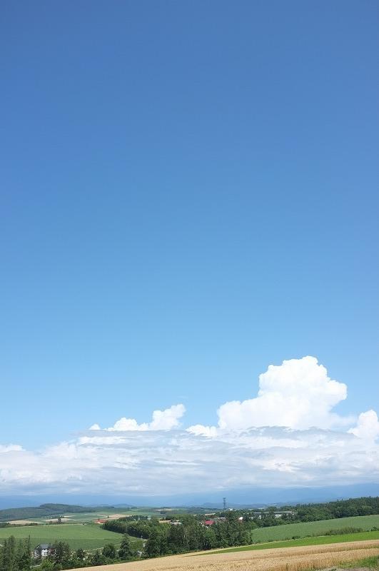 富良野夏の午後_f0050534_783713.jpg