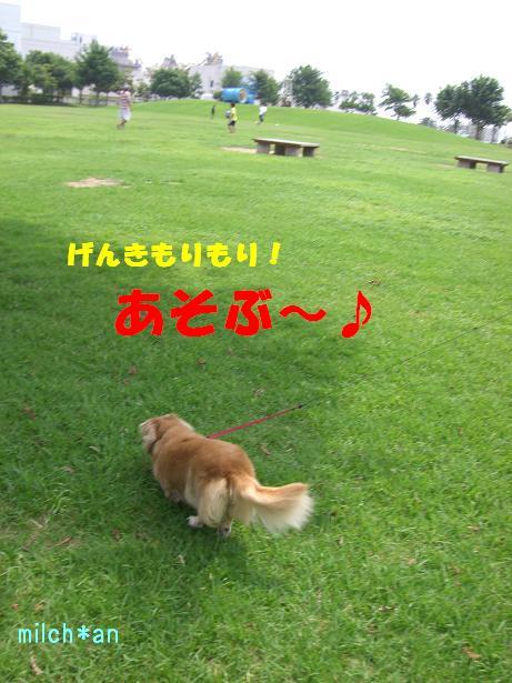 b0115642_21102398.jpg