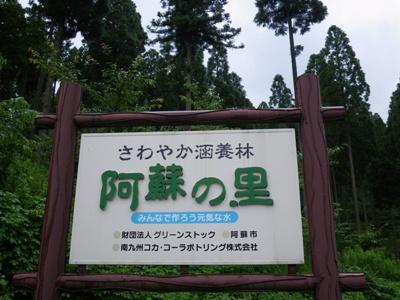 森林浴_a0114743_1732573.jpg