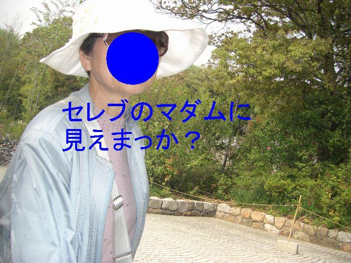 f0053952_22215537.jpg