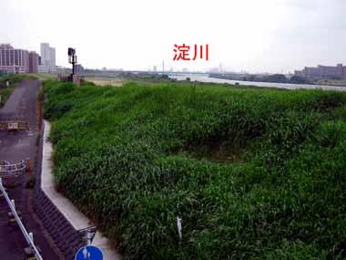 7/4豊里大橋。_d0136282_2357266.jpg