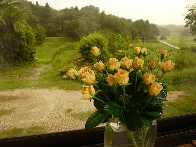 お花のチカラ_c0165589_865718.jpg
