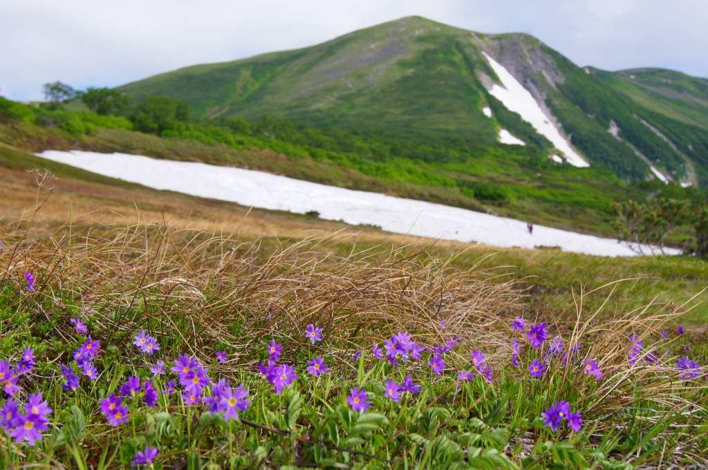 7月24日高原温泉から緑岳-その1-_f0138096_1471233.jpg