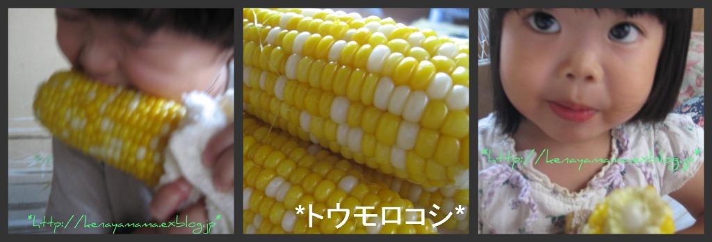 b0172998_1728854.jpg
