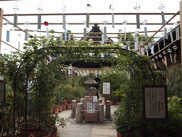 奈良、橿原へ行く。_a0050302_3314916.jpg
