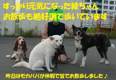 f0121712_130522.jpg