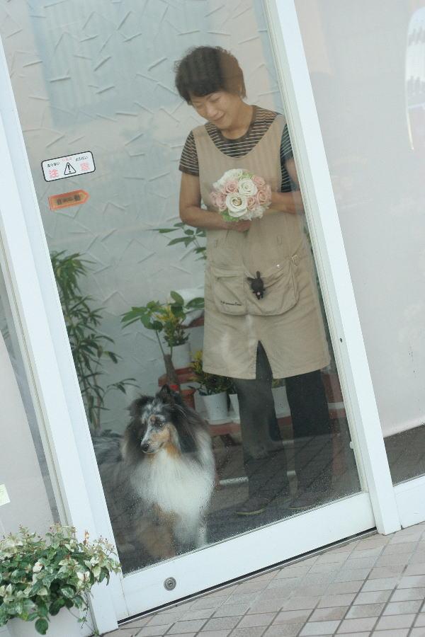 はな&ひな 出張レッスン 静岡へ_a0042928_1401286.jpg