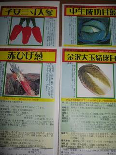 秋植え固定種とどきました。_a0139242_5302949.jpg